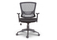 Stella Ergonomic Task Chair